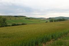 4. near Castildelgado