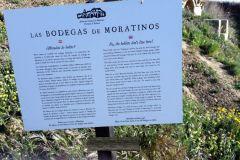 7.-Bodegas-Moratinos-2