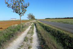 16.Senda-Bercianos-del-Real-Camino-2