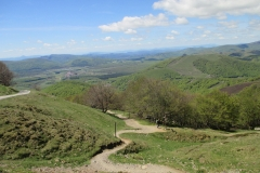 20. Descent to Roncevalles (1)