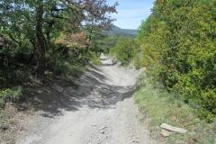 11. Descent Alto de Erro to Zubiri (2)