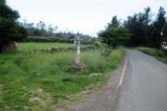 3.-Near-Ventas-De-Naron