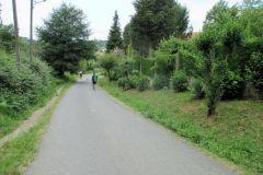 13.-On-the-way-to-Ribadiso-2