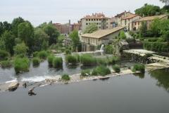 16. River Arga (2)