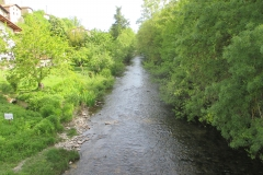 7. River Arga at Zuriain