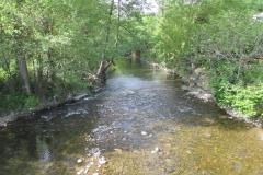 8. River Arga at Zuriain