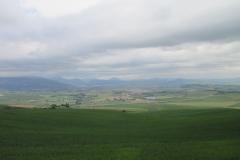 12. Zariquiegui to Alto de Perdon (1)