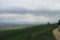 12. Zariquiegui to Alto de Perdon (2)