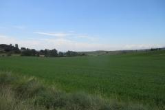 15. Alto de Perdon to Uterga (1)