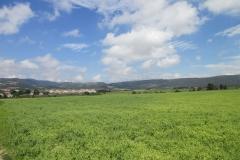 15. Alto de Perdon to Uterga (2)