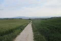 6. Looking back to Pamplona