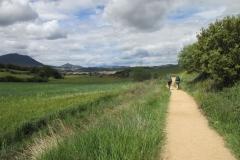 12. Lorca to Villatuerta (3)