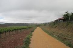 6. Maneru to cirauqui (1)