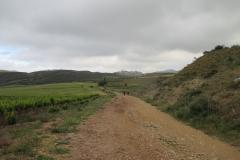 6. Maneru to cirauqui (3)