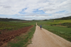9. On the way to Los arcos (1)
