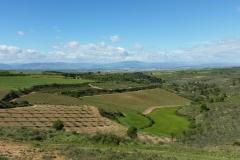 5. Torres de rio to Viana (5)