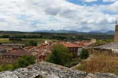 7. Viana (3)