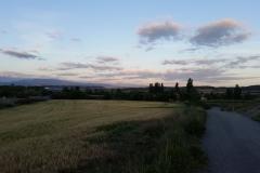 1. Leaving Viana
